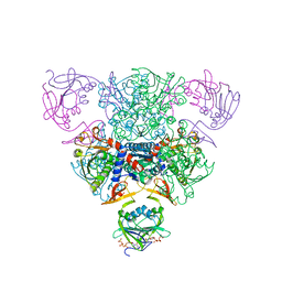 Molmil generated image of 1rag