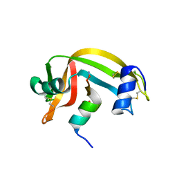 Molmil generated image of 1rbe