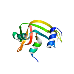 Molmil generated image of 1rbg