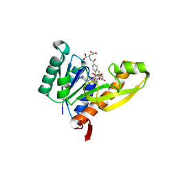 Molmil generated image of 1rby