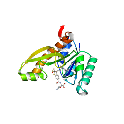 Molmil generated image of 1rc0