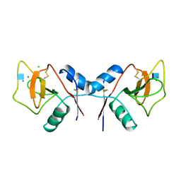 Molmil generated image of 1rdn