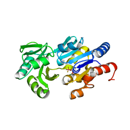 Molmil generated image of 1rlo