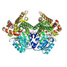 Molmil generated image of 1rrm