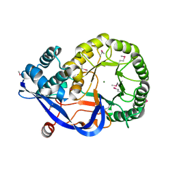 Molmil generated image of 1rvk