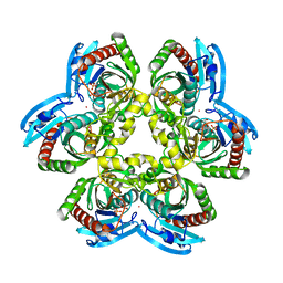 Molmil generated image of 1rxu