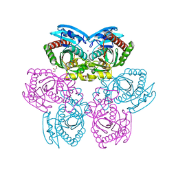 Molmil generated image of 1rxy