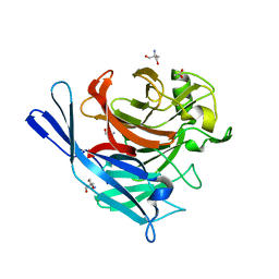 Molmil generated image of 1s18