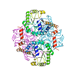 Molmil generated image of 1s2t