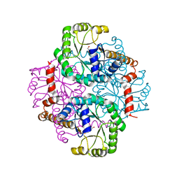 Molmil generated image of 1s2u