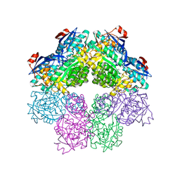Molmil generated image of 1sjb