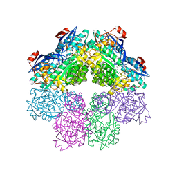 Molmil generated image of 1sjc