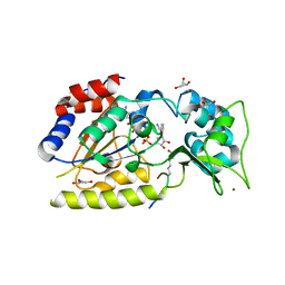 Molmil generated image of 1szc