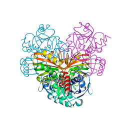 Molmil generated image of 1szj