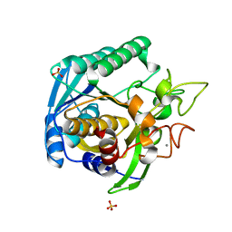 Molmil generated image of 1t1g