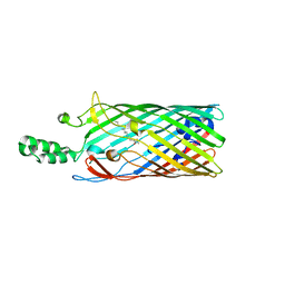 Molmil generated image of 1t1l
