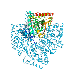 Molmil generated image of 1t25