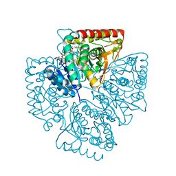 Molmil generated image of 1t26