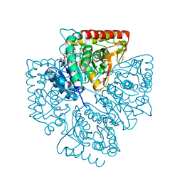 Molmil generated image of 1t2d