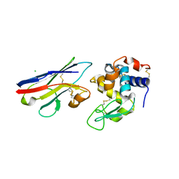 Molmil generated image of 1t6v