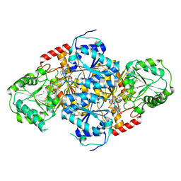 Molmil generated image of 1t9c
