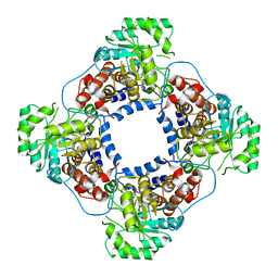 Molmil generated image of 1tb3