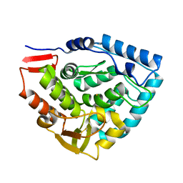 Molmil generated image of 1tdw