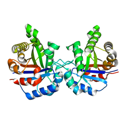 Molmil generated image of 1tim