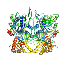 Molmil generated image of 1tll