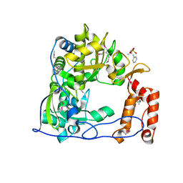 Molmil generated image of 1tp7