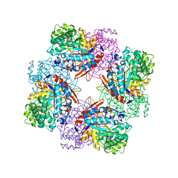 Molmil generated image of 1tr1