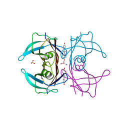 Molmil generated image of 1tt6