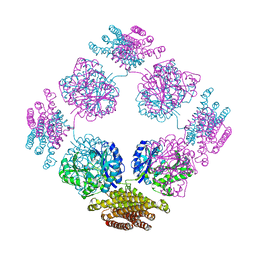 Molmil generated image of 1tt9