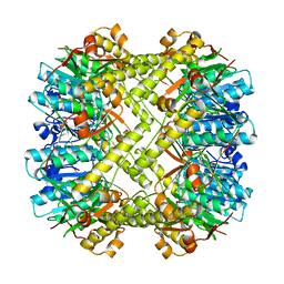 Molmil generated image of 1tyf