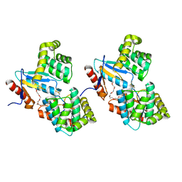 Molmil generated image of 1u3a