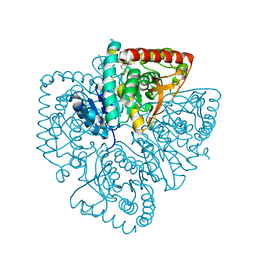 Molmil generated image of 1u4s