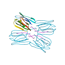Molmil generated image of 1ugx