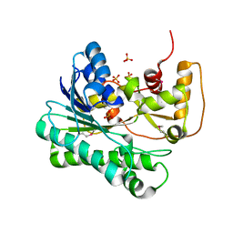 Molmil generated image of 1ujm