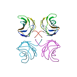 Molmil generated image of 1ul9