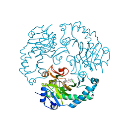 Molmil generated image of 1uob