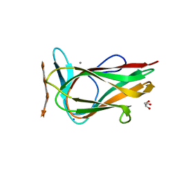 Molmil generated image of 1uy4