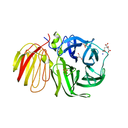 Molmil generated image of 1uyp