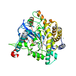 Molmil generated image of 1va6