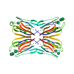 Molmil generated image of 1vbo