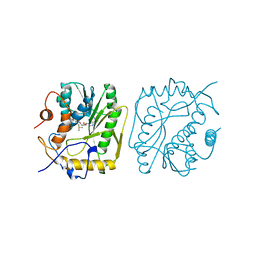Molmil generated image of 1vpt