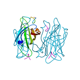 Molmil generated image of 1vwf