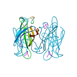 Molmil generated image of 1vwo