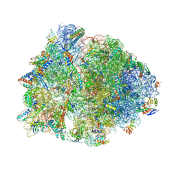 Molmil generated image of 1vy4