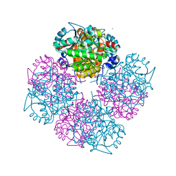 Molmil generated image of 1w5m