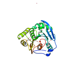Molmil generated image of 1wb5